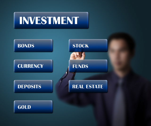 Janguard Investment Options Image